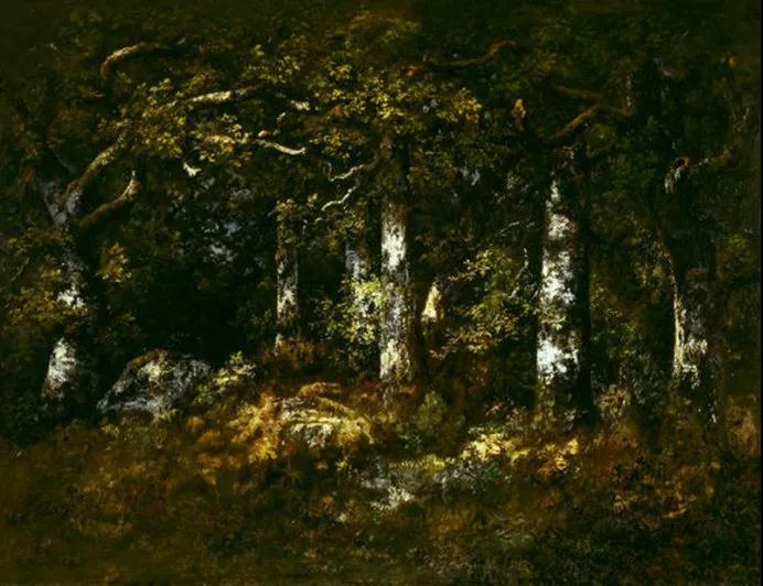 楓丹白露森林