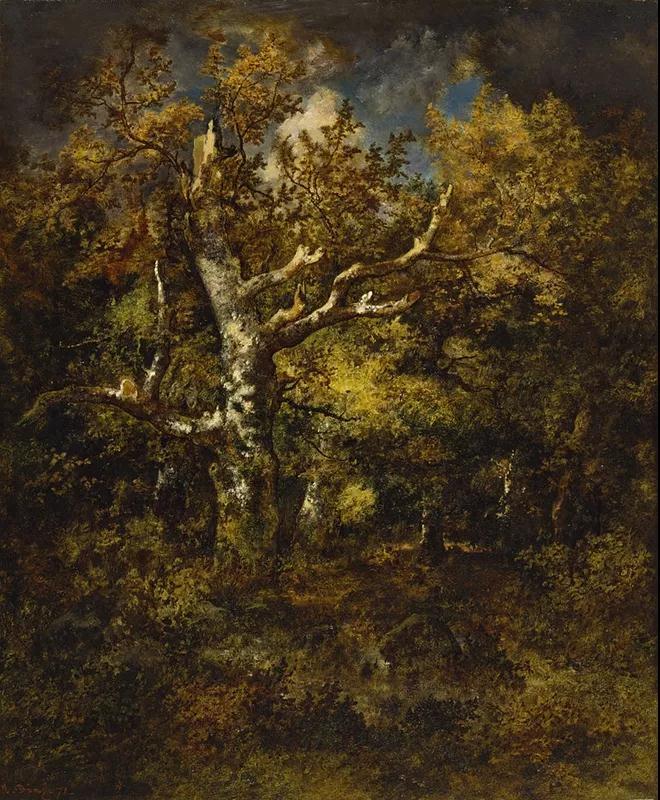 楓丹白露森林的秋天